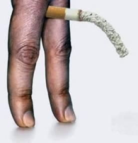 Bonne santé du pénis