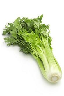 Celeri SpecialHomme.com